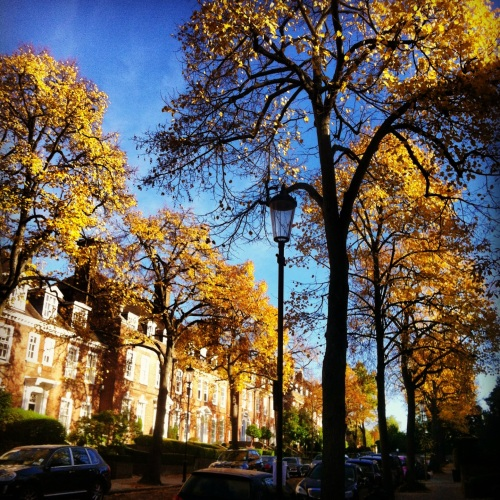 Ilchester Place, Holland Park. One of the most expensive (and beautiful) streets in London